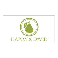 harry-david